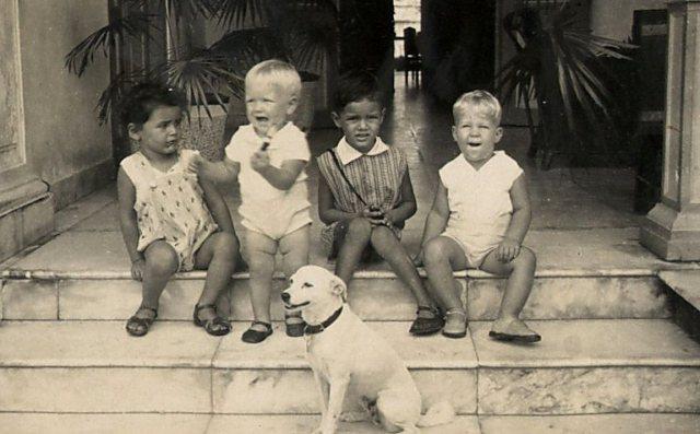 Vier kinderen met hond
