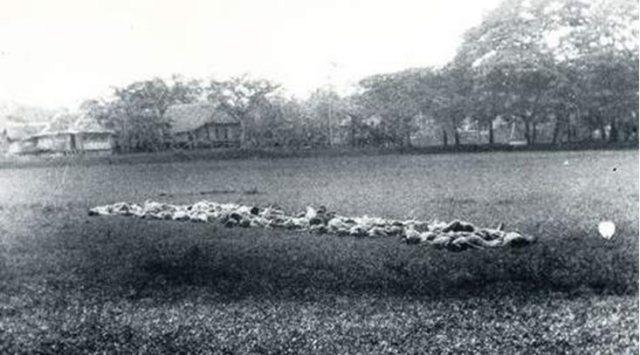 Volgens het verslag achterop deze foto, haalde de eenheid van Vermeulen na het executeren van dertig mensen, nog eens 24 man, die in een kolonne van twee naar het plein werden gebracht. Zij moesten knielen naast de lijken en werden met een stengun doodgeschoten. Foto: NIMH.
