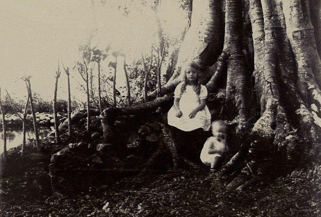 Ons onbekend meisje, samen met Jeanette Feenstra, bij boom, badplaats Pikattan, september 1917.