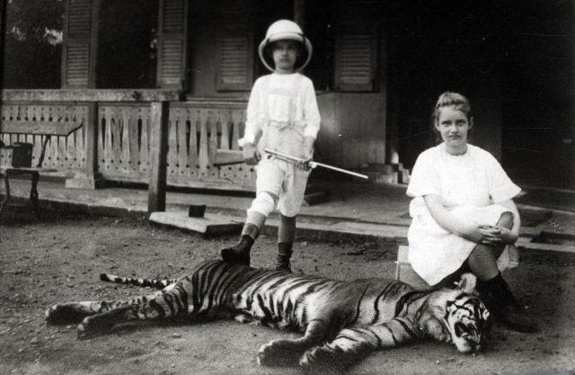 Twee kinderen van de administrateur van tabaksonderneming Gedong Jehore in Deli met een dode tijger, ca. 1914