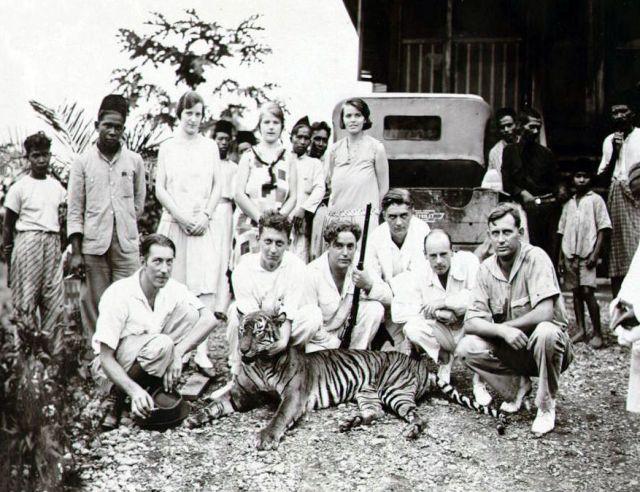 Personeel van de B.P.M. en een geschoten tijger op het B.P.M.-emplacement Djoeloe Rajeu te Djoelo-rajeu bij Idi, 1927-1932