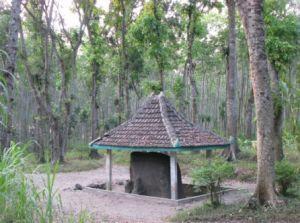 De olifant in 2009: inmiddels is er een dakje boven geplaatst.