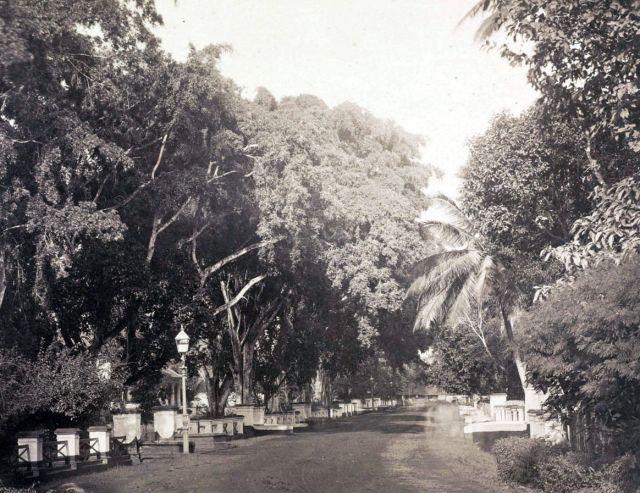 Woodbury & Page, 'Gang Scott in Weltevreden te Batavia [richting Tanah Abang in het westen]', uit: 'Vues de Java Photographies par Woodbury & Page Batavia'.