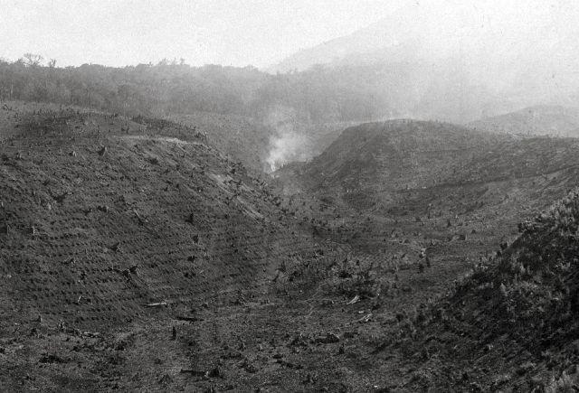 Ontginning van 1929, gedeeltelijk van plantgaten voorzien, het schoonbranden is nog niet beëindigd. Nov. ´29.