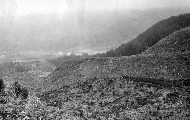Het grote ravijn, dat uitloopt op Soember Brantas, ontgonnen.