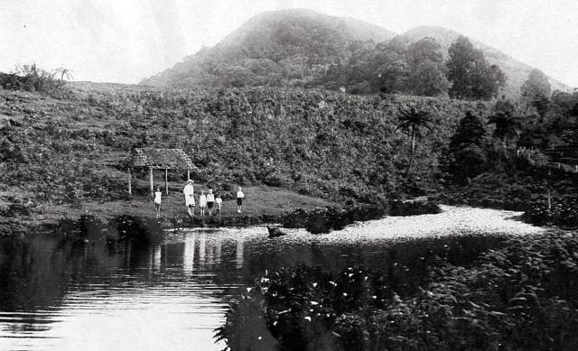 De voornaamste tak van de Brantas, waar de kweekbedden het water van krijgen